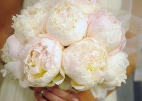 花びらいっぱいの芍薬!可愛い見た目に香りも漂う『美人の象徴』愛されブーケ♡ | marry[マリー]