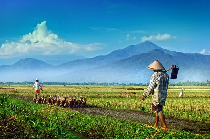 Banyu Biru Ambarawa Central Java Indonesia    step of life by nooreva