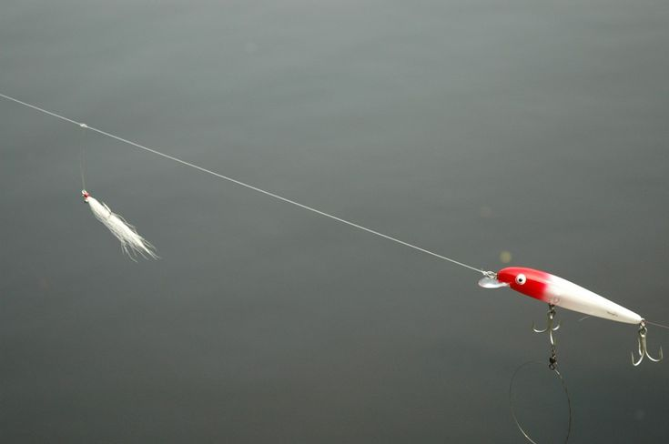 17 best images about fishin on pinterest trout fly for Outer banks surf fishing tips