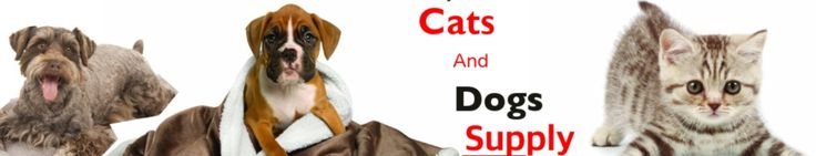 Cat Beds washable  Cats and Dog Supply Company -Best Cat Product Review Services Pet Supplies Near Me