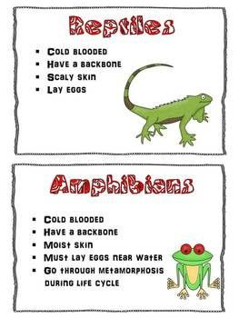 Reptiles Unit Study Week 1: Mammals, Reptiles, Fish, OH MY!