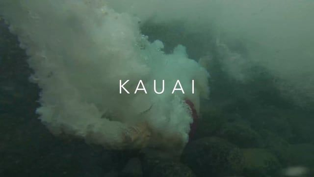 Here's a short video of our trip to the stunning island of Kauai Hawaii.   The footage was shot with the DJI Mavic Pro, DJI Osmo Mobile and GoPro Hero 3 Music by Odesza Follow us for more for more travel videos   www.brandonscottphotography.com   Instagram: https://www.instagram.com/brandonscottphoto/