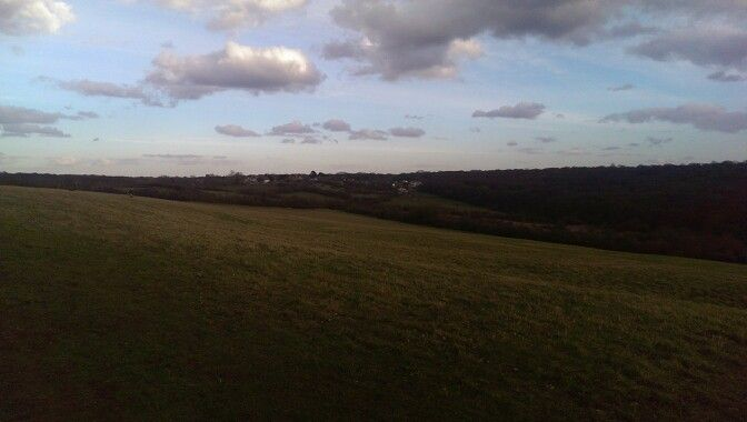 Yardley Hill, looking out onto Epping Forest and North Chingford