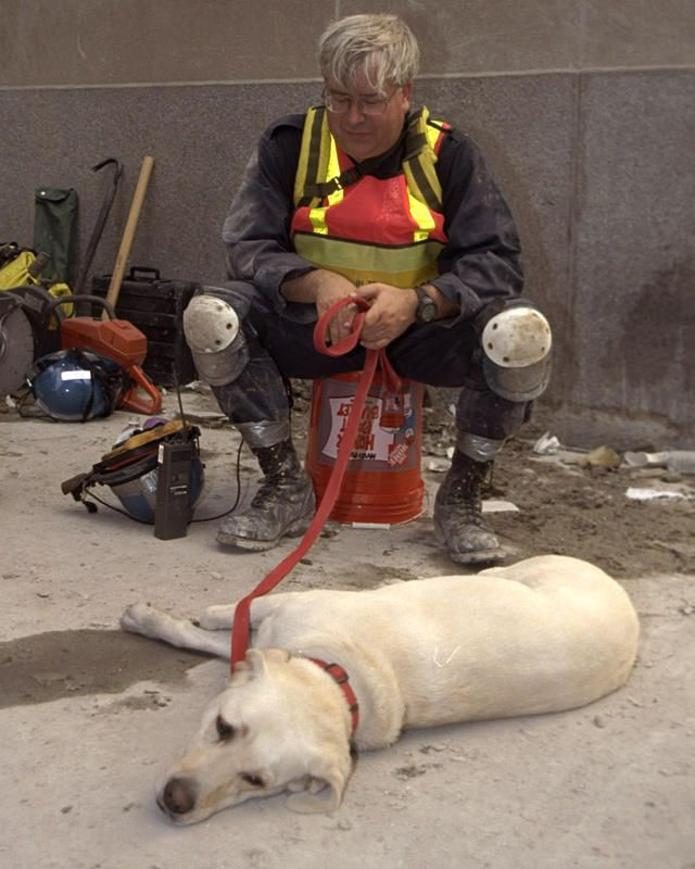 A tired rescue worker and his dog rest in the aftermath of the World Trade Center attacks. —Debra Rothenberg