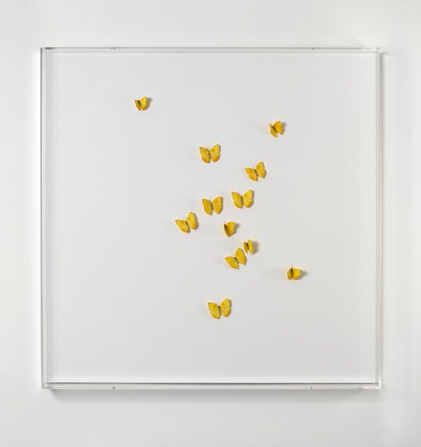 Claudio Parmiggiani   Untitled (2000), Available for Sale   Artsy