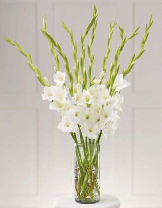 Best 10 tall flower arrangements ideas on pinterest - Flower arrangements for vases ...