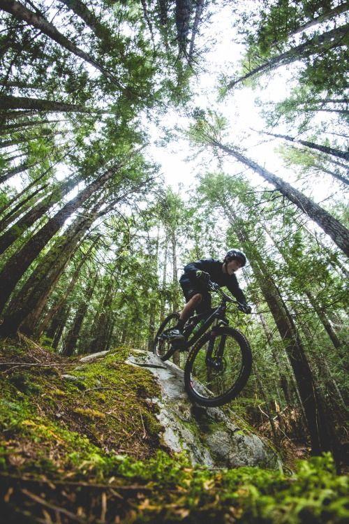 Great perspective! // Mountain Biking // Downhill: