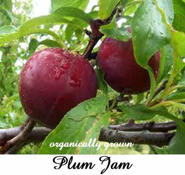 Ingredients: fresh plum pulp from organically grown plums, unrefined sugar, salt, lemon;  no synthetic colours or flavours, no chemicals.