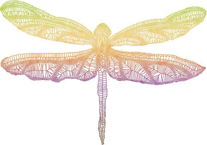 Si bien los insectos no son los animales más populares en los tatuajes, las libélulas son un lindo motivo para tatuarse, tienen mucho significado y se pueden crear diseños realmente geniales. Pero dejando de lado lo estético y volviendo en su simbolismo, estos tatuajes tiene un significado muy importante, que está