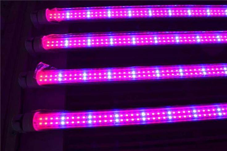 T8 LED Grow Light Tubes - 600mm, 900mm & 1500mm  #led #futurelight #ledlights #futurelightledlightssouthafrica