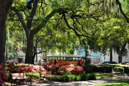 Savannah, GeorgiaDowntown Savannah, Colorfulplaces Com Savannah, Colorfulplacescom Savannah, Savannah Travelguid, Savannah Trips, 10 Things, Savannah Georgia, Savannah Ga, Things To Do