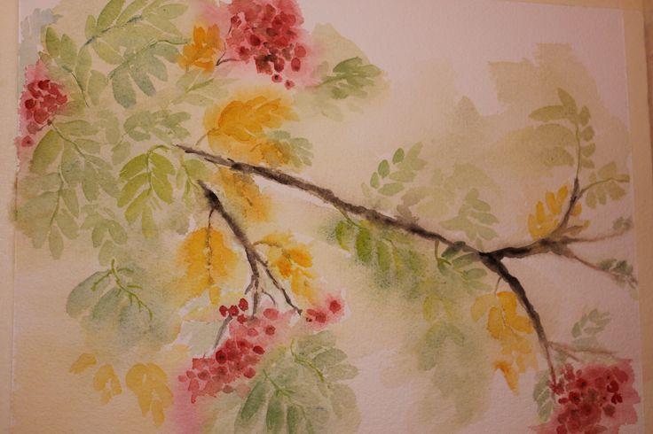 Syksyinen pihlaja, maalattu Kolilla.