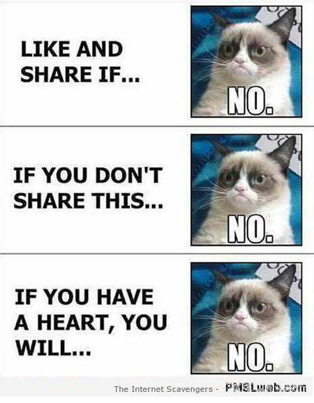 "Love it!!! I hate those "" pin this or else.."" Or "" you must not care if you ignore thise"" type posts...its almost bullying...i ignore those posts quickly...PMSL pics – A funny picture gallery 