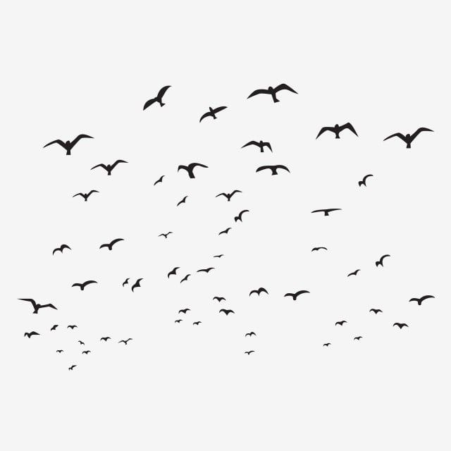 Abstract Birds Silhouette Flying Bird Isolated Black Flock White Nature Group Illustration Backgroun Flying Bird Silhouette Bird Silhouette Silhouette Painting
