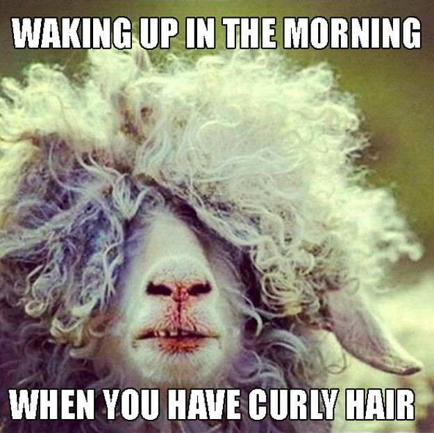 Your morning reflection is always a hot mess. | 22 Memes That Are Way Too Real For People With Curly Hair