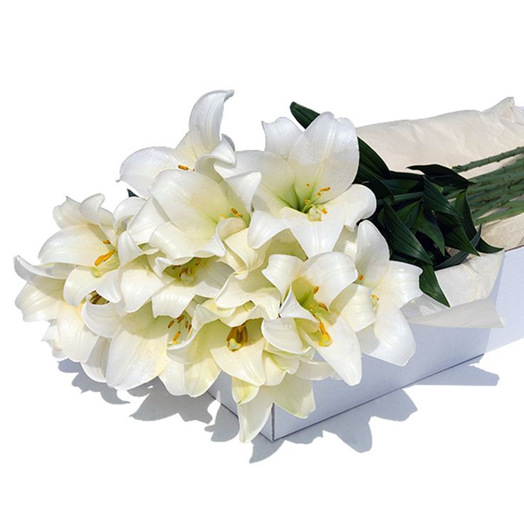 Flower Box of Fresh White Lilies 24 pcs - delivered in the Netherlands by GiftsforEurope