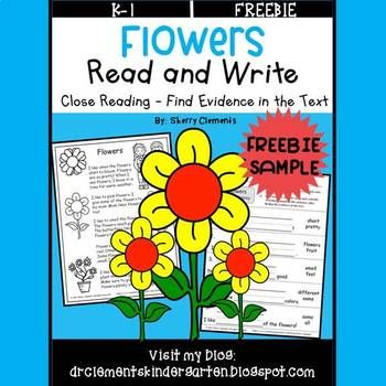 4502 best images about First Grade Freebies on Pinterest ...