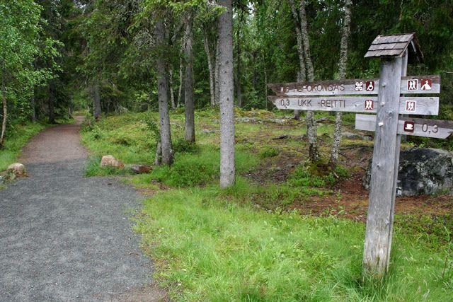 Hepoköngäs on yksi Suomen korkeimmista luonnonvaraisista vesiputouksista.