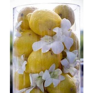 simple and inexpensive lemon centerpieces - could do with tangerines and blue flowers