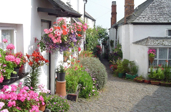 Clovelly, North Devon. clovelly.co.uk: Clovelli Devon, North Devon, Wonder Cottages, Devon England, Clovelli North, Side Village, Picturesqu Sea, Cottages Flowers, Devon Village