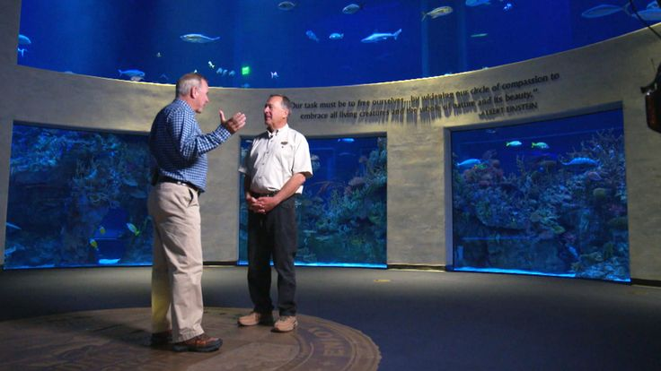 Johnny Morris is the fisherman and conservationist who founded Bass Pro Shops in the 1970s, turning it into the massive superstore it is today. Now, he's turning some focus to a wildlife museum to hook more people on the great outdoors. NBC's Kevin Tibbles has this week's Sunday Closer.