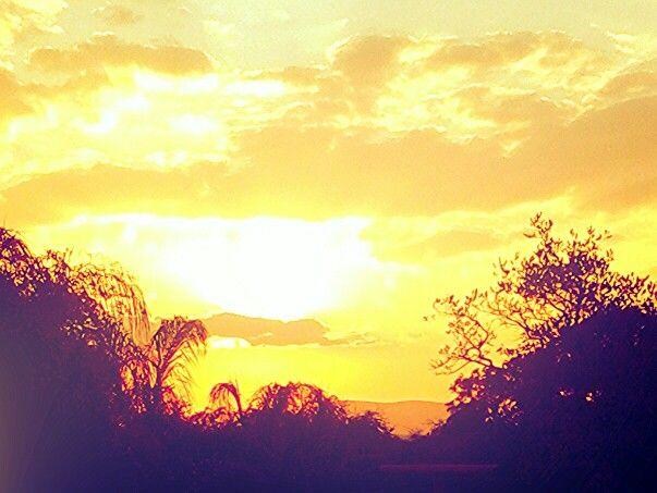 Sun sat