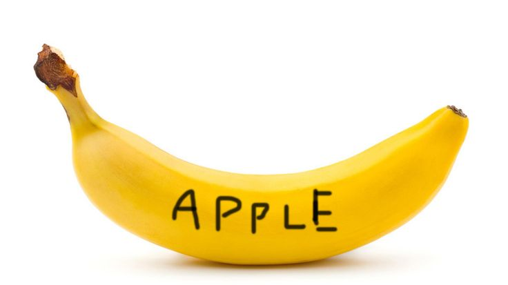 STEPHEN FOSTER MEYER - banana, with a joke