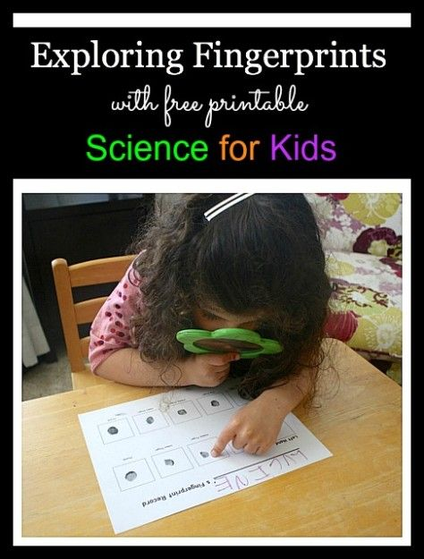 Investigate your own fingerprints and then turn them into art! (Exploring Fingerprints~ Science Activities for Kids)