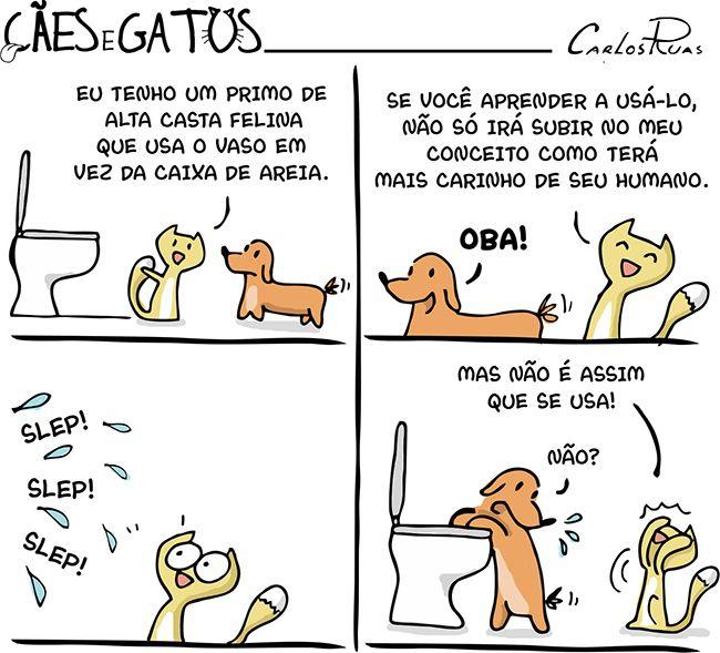Cães e Gatos – Subindo no conceito