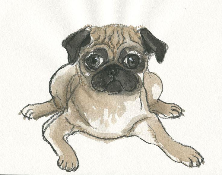 Puppy pug (detailed). watercolour and pencil. https://www.facebook.com/judywatsonart  #pug