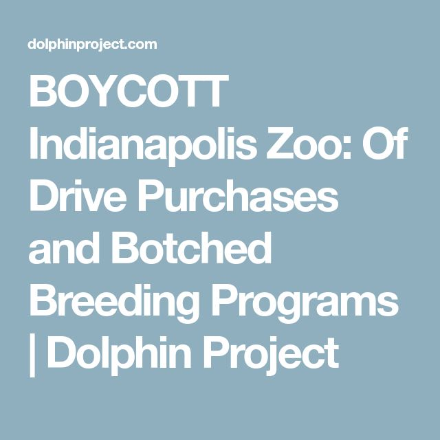 BOYCOTT Indianapolis Zoo: Of Drive Purchases and Botched Breeding Programs | Dolphin Project