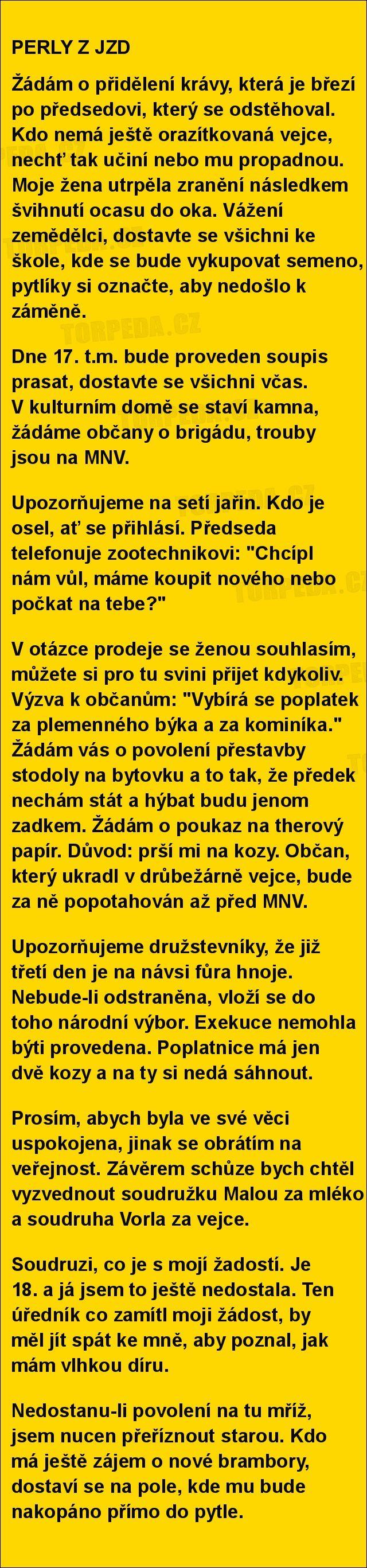 PERLY Z JZD | torpeda.cz - vtipné obrázky, vtipy a videa
