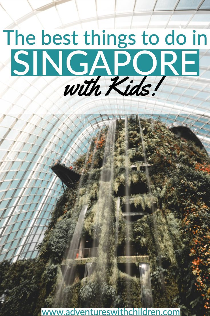 Where To Bring Kids In Singapore Adventures With Children Singapore With Kids Family Travel Destinations Fun Family Trips
