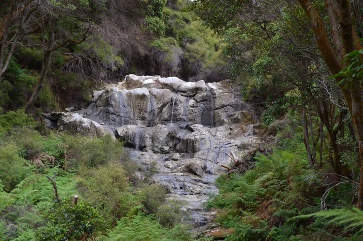 Kakahi Falls. The largest natural hot water falls in the Southern Hemisphere.