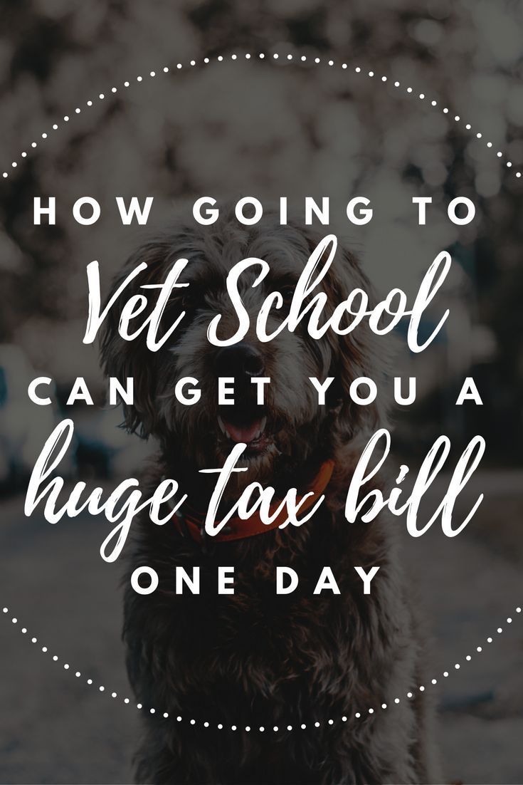 Most veterinarians will owe a big tax payment one day for private sector student loan forgiveness, and that's ok because you can plan for it and do what you love