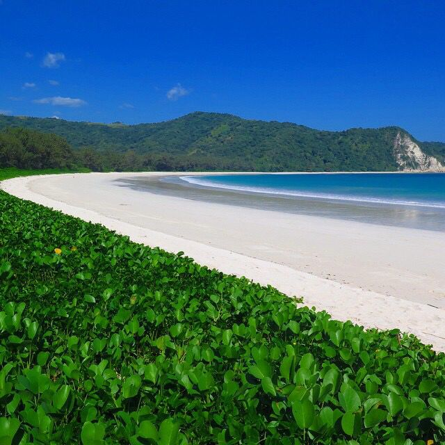 Tarimbang beach, sumba island, indonesia.