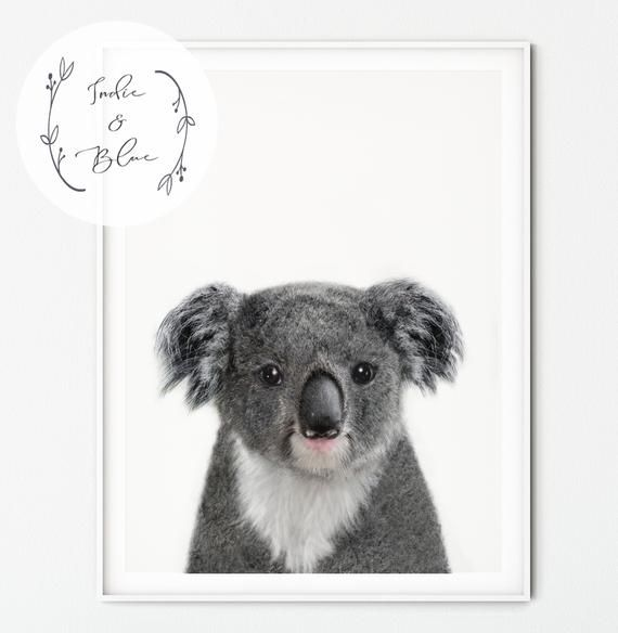 Australian Woodland Nursery Prints Baby Koala Forest Animals