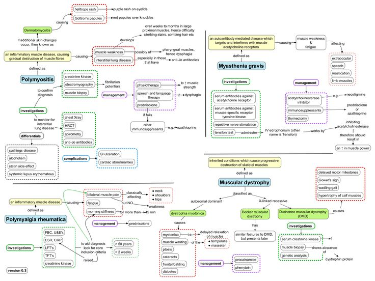 87 best MSK\/Dermatology images on Pinterest Human body, Medical - ics organizational chart