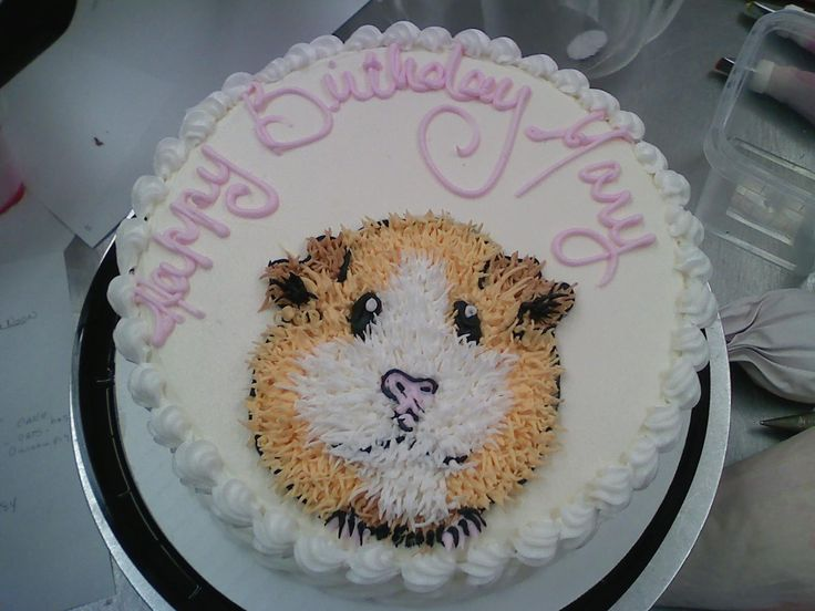 Guinea Pig cake. Used a number 2 writing tip to make him look fuzzy