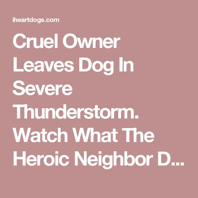 Cruel Owner Leaves Dog In Severe Thunderstorm. Watch What The Heroic Neighbor Does! – iHeartDogs.com