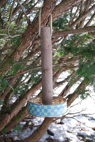 DIY bird feeder :: Stick/branch + Tuna Can = Bird Feeder on the cheap! :: Screw an old tin to the bottom of a stick. Drill a hole thru top for hanging! | #birdfeeder #crafts #garden
