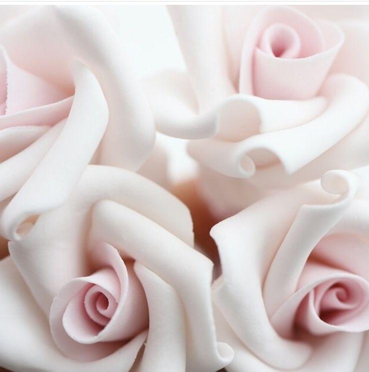 www.blossomcopenhagen.com show your love and let it blossom
