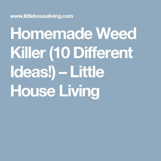 Homemade Weed Killer (10 Different Ideas!) – Little House Living