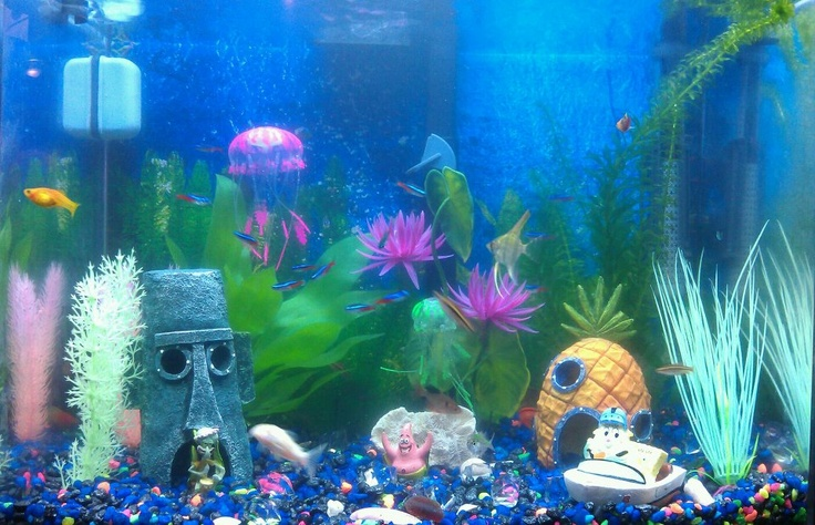 17 best images about future fish tank on pinterest for Glow in the dark fish tank