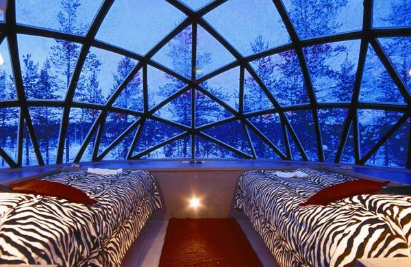 Credit: Steve Dobson/Unusual Hotels of the World Lie back and watch the fantastic Northern Lights from your bed in the futuristic glass iglo...