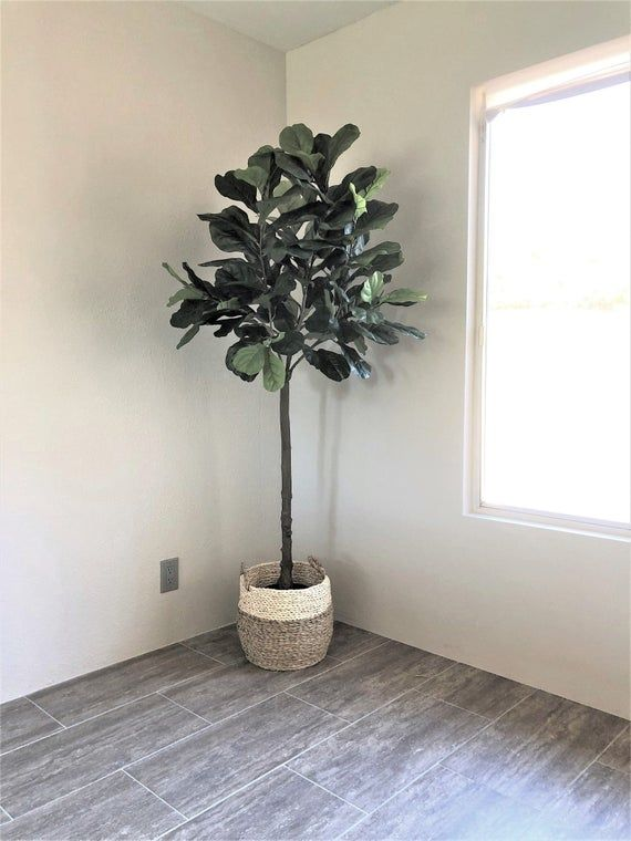 6 Faux Fiddle Leaf Fig Tree Artificial Fiddle Leaf Fig Tree Artificial Tree Fake Tree Fiddle Le Fake Trees Fiddle Leaf Fig Artificial Tree