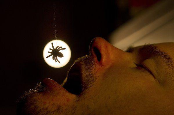 Spiser du edderkopper, mens du sover?