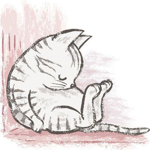Necesito dormir.. #Cat