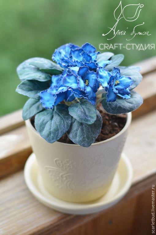 9d38473d64f629177770ea480d6o--tsvety-floristika-fialka-blue-dragon-iz.jpg (509×768)