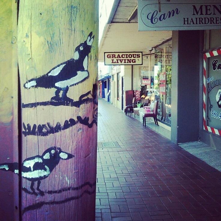gracious living mentone australia